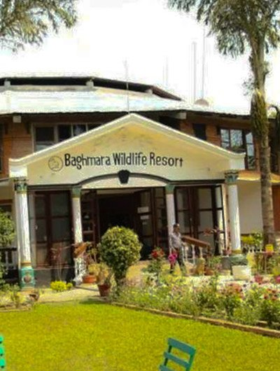 Baghmara WIldlife Resort