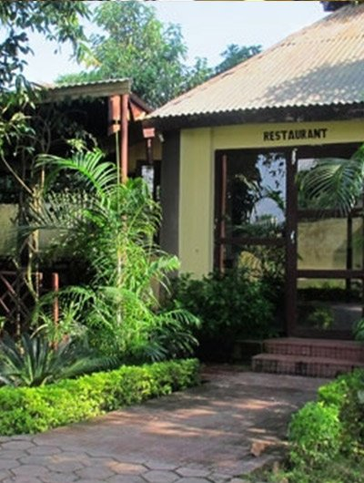 Hotel Rain Forest